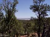 1024 Sierra Verde Ranch - Photo 1
