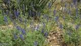 9875 Upper Trout Creek Road - Photo 35