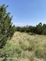 42173 Deer Camp Trail - Photo 66