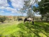 13930 Antelope Way - Photo 20