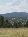 42173 Deer Camp Trail - Photo 138