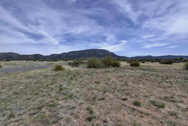 00 E Wildcat Way, Prescott Valley, AZ 86315 (#1003757) :: The Kingsbury Group