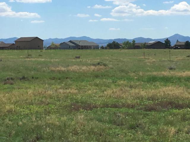 9305 E Tatanka Trail, Prescott Valley, AZ 86315 (#1005746) :: HYLAND/SCHNEIDER TEAM