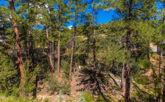 1458 E Valley View Road, Prescott, AZ 86303 (#1006264) :: HYLAND/SCHNEIDER TEAM