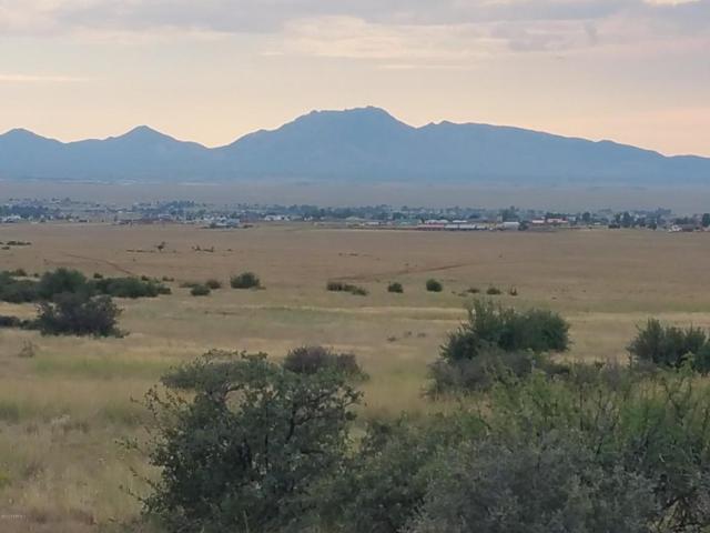 10960 N Sport Horse Lane, Prescott Valley, AZ 86315 (#1006449) :: The Kingsbury Group