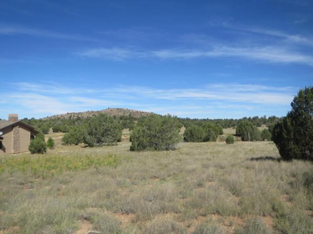 11930 W Six Shooter Road, Prescott, AZ 86305 (#1006734) :: The Kingsbury Group