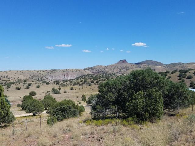 1401 E Reata Trail, Paulden, AZ 86334 (#1007752) :: The Kingsbury Group