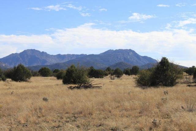 0 N Puntenney Road, Prescott, AZ 86305 (#1007814) :: The Kingsbury Group