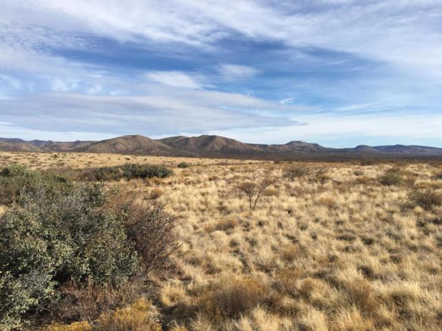 0 E Orme Road, Dewey-Humboldt, AZ 86327 (#1008107) :: The Kingsbury Group