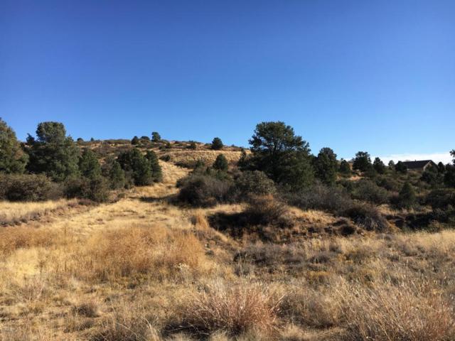 17609 S Oak Drive, Peeples Valley, AZ 86332 (#1008335) :: HYLAND/SCHNEIDER TEAM