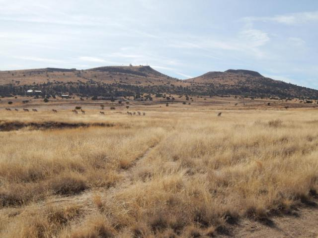 1150 S Lakeshore Drive, Chino Valley, AZ 86323 (#1008690) :: HYLAND/SCHNEIDER TEAM