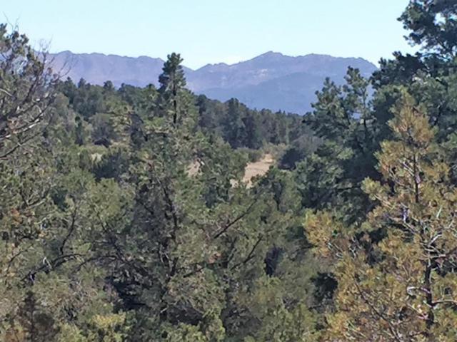 15035 N Four Mile Creek Lane, Prescott, AZ 86305 (#1008794) :: HYLAND-SCHNEIDER