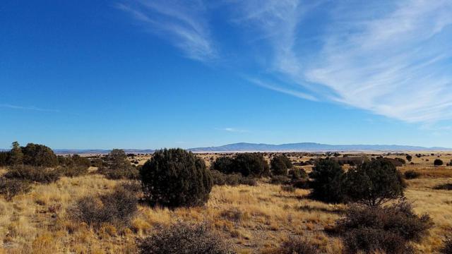 0 W Longbranch Trl., Prescott, AZ 86305 (#1008865) :: The Kingsbury Group