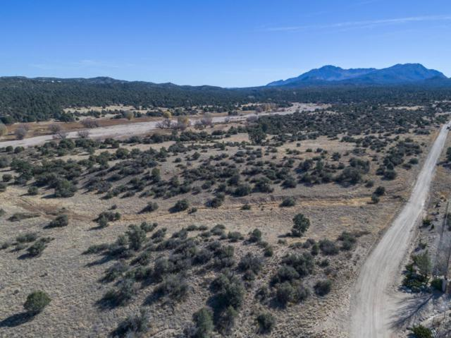 13145 N Pheasant Run Road, Prescott, AZ 86305 (#1008997) :: HYLAND-SCHNEIDER