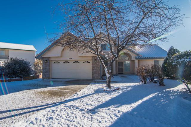 229 Valley View Court, Prescott, AZ 86301 (#1009104) :: HYLAND/SCHNEIDER TEAM