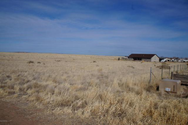 7050 E Trottin Down Road, Prescott Valley, AZ 86315 (#1009823) :: The Kingsbury Group