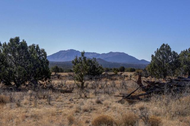 4425 W Dillon Wash Road, Prescott, AZ 86305 (#1009947) :: The Kingsbury Group