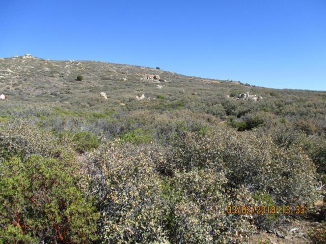 609 S Dewey Overlook Way, Dewey-Humboldt, AZ 86327 (#1010025) :: HYLAND/SCHNEIDER TEAM