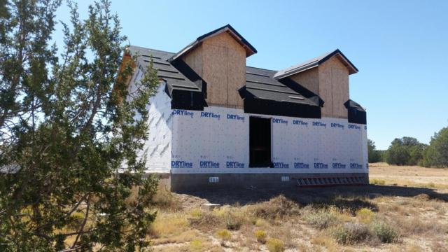 48950 N Anvil Rock Road, Seligman, AZ 86337 (#1010050) :: HYLAND/SCHNEIDER TEAM