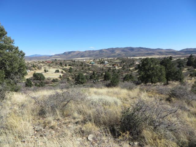 17888 Tawny Lane, Peeples Valley, AZ 86332 (#1010072) :: HYLAND/SCHNEIDER TEAM