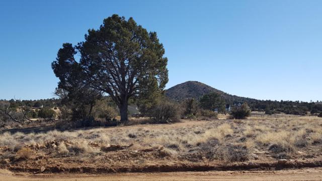4695 W Morgan Trail, Prescott, AZ 86305 (#1010253) :: The Kingsbury Group