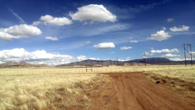 0 N Antelope Meadows, Prescott Valley, AZ 86315 (#1010329) :: The Kingsbury Group