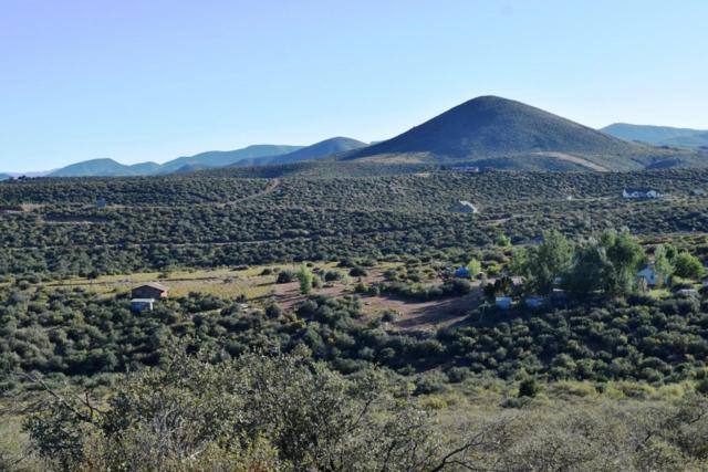 1328 S Dewey Road, Dewey-Humboldt, AZ 86327 (#1010391) :: HYLAND/SCHNEIDER TEAM