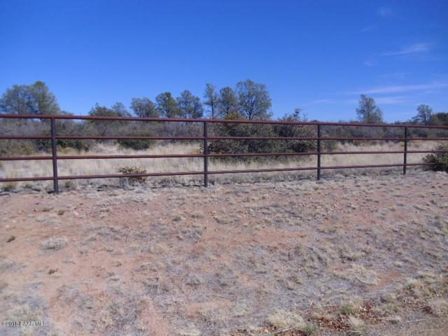 9565 N Equine Road, Prescott, AZ 86305 (#1010446) :: The Kingsbury Group