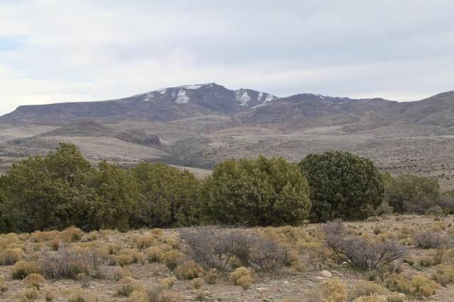 Lot 237 Prairie Schooner, Wikieup, AZ 85360 (#1010659) :: Shelly Watne