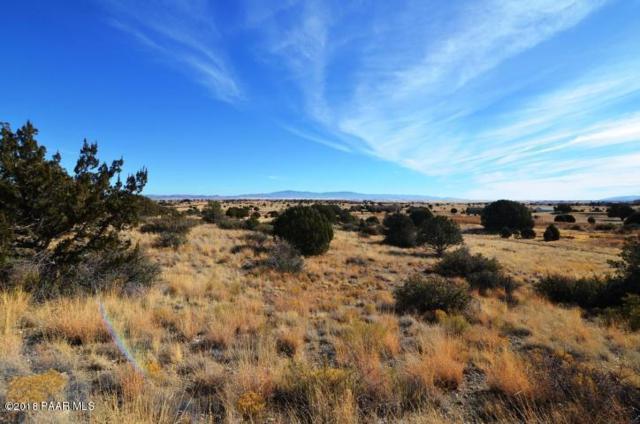 00 Longbranch Trail, Prescott, AZ 86305 (#1011290) :: The Kingsbury Group