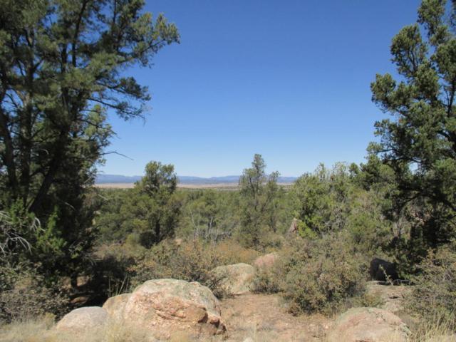 6150 W Dillon Wash Road, Prescott, AZ 86305 (#1011402) :: The Kingsbury Group