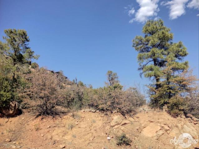 1045 Quicksilver Drive, Prescott, AZ 86303 (#1011506) :: HYLAND/SCHNEIDER TEAM