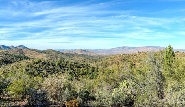 0 S Ruger Ranch Road, Kirkland, AZ 86332 (#1011765) :: The Kingsbury Group
