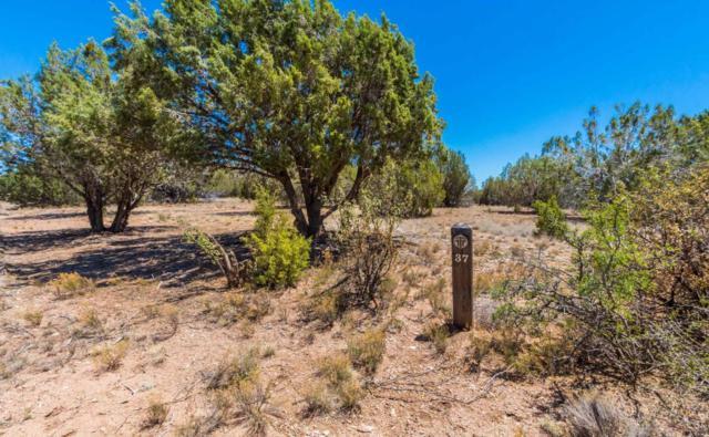 5485 Bruno Canyon Drive, Prescott, AZ 86305 (#1012067) :: The Kingsbury Group