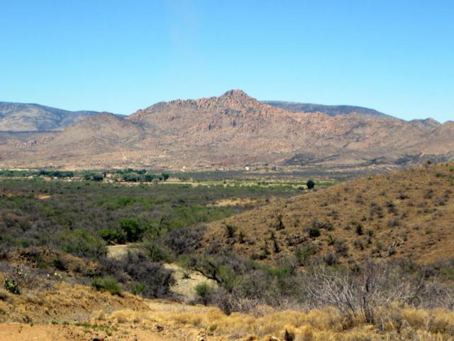 00 Puma Path, Peeples Valley, AZ 86332 (#1012085) :: The Kingsbury Group