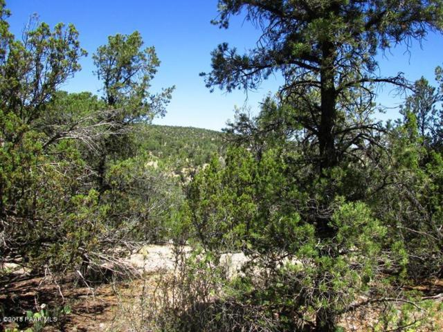 99 W Bucks Road, Seligman, AZ 86337 (#1012449) :: HYLAND/SCHNEIDER TEAM