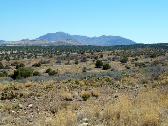 3630 W Deer Trail, Chino Valley, AZ 86323 (#1012711) :: The Kingsbury Group