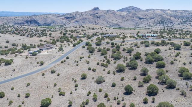 20700 N Buckboard Lane, Paulden, AZ 86334 (#1012776) :: HYLAND/SCHNEIDER TEAM