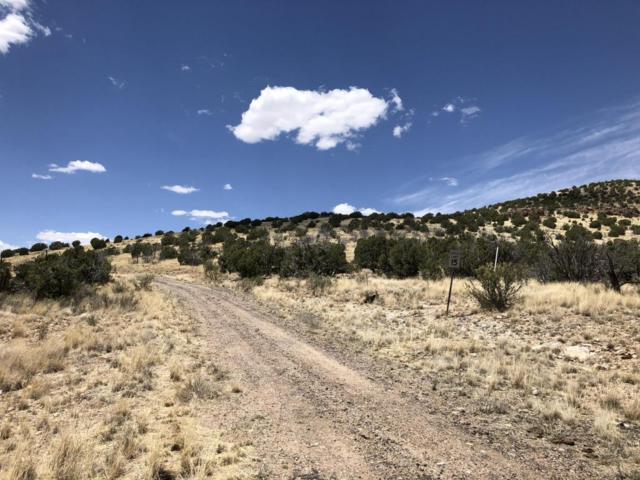 19055 Butte Pass Road, Prescott, AZ 86305 (#1012864) :: The Kingsbury Group