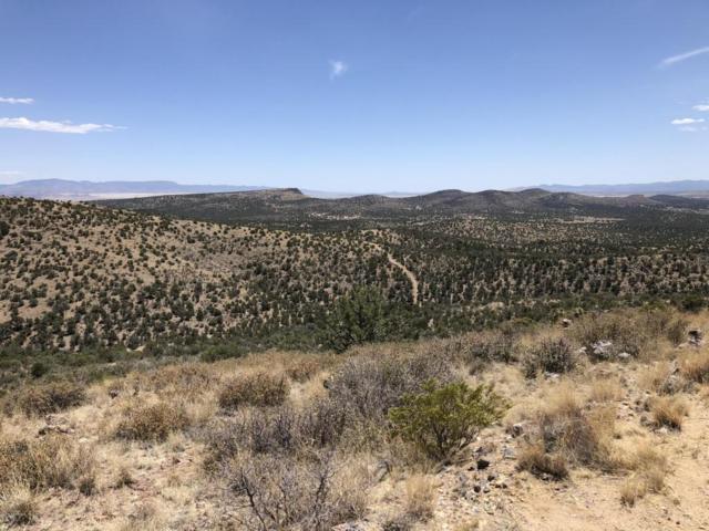 19300 N Sullivan Buttes Road, Prescott, AZ 86305 (#1012865) :: The Kingsbury Group
