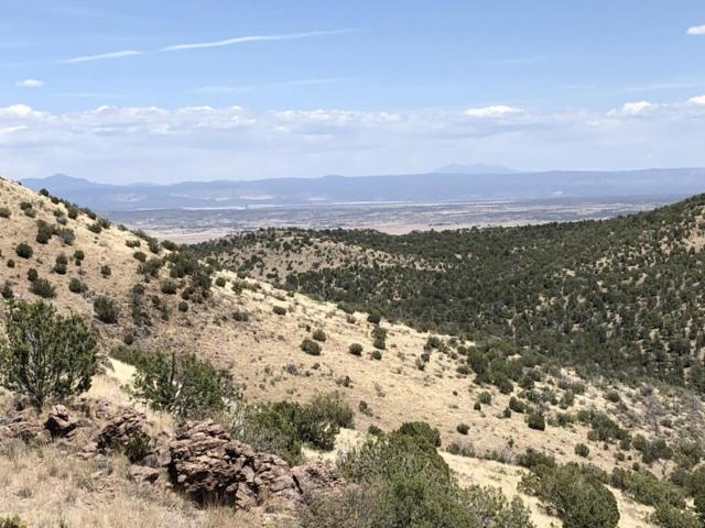 19100 N Sullivan Buttes Road, Prescott, AZ 86305 (#1012896) :: HYLAND/SCHNEIDER TEAM