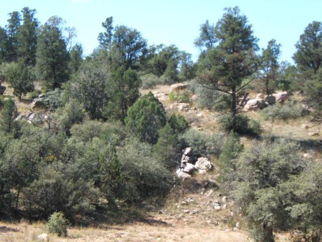 16700 N Top View Lane, Prescott, AZ 86305 (#1012902) :: HYLAND/SCHNEIDER TEAM