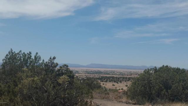 0 Pointer Trail, Paulden, AZ 86334 (#1012931) :: The Kingsbury Group