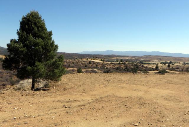 17549 S Tawny Lane, Peeples Valley, AZ 86332 (#1013237) :: HYLAND/SCHNEIDER TEAM