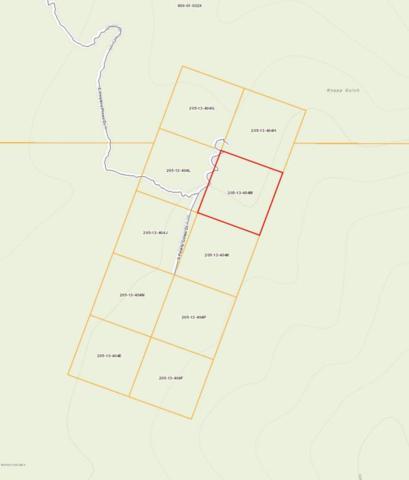 0000 Pearly Gates Drive, Walker, AZ 86303 (#1013900) :: HYLAND/SCHNEIDER TEAM
