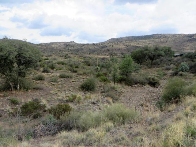 21755 S State Route 89, Yarnell, AZ 85362 (#1013923) :: HYLAND/SCHNEIDER TEAM