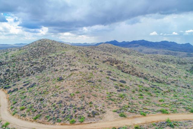 Lot 65 Bull Whip Road, Hillside, AZ 86321 (#1013962) :: The Kingsbury Group