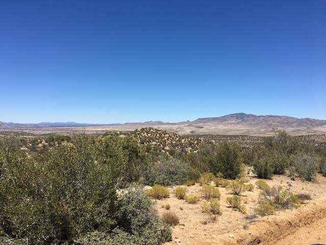 80 Acres Bogles Ranch Road, Wikieup, AZ 85360 (#1014128) :: Shelly Watne