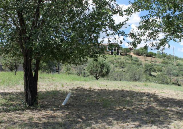 250 Newport Drive, Prescott, AZ 86303 (#1014809) :: The Kingsbury Group