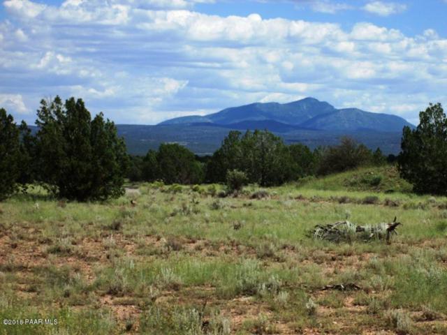 123 Lightning Lane, Ash Fork, AZ 86320 (#1015918) :: HYLAND/SCHNEIDER TEAM